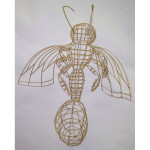 Foundation | ART 111 | Wireframe insect exploration