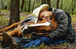 horse and owner relationship