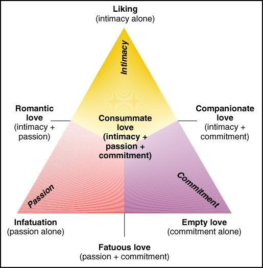define and describe the three components in sternberg s triangular theory of love It makes the whole world go around what is it it's love love is the eternal topic   robert sternberg's a psychologist and he formulated this theory at around  1986 in a nutshell, he says that love is defined by 3 components.