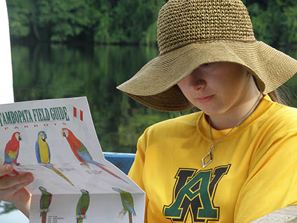 Tambopata Parrots Field Guide