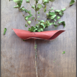 Moringa branch before a test of a design concept.