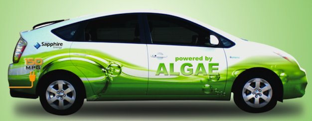 Can Biofuel Be Used In Cars