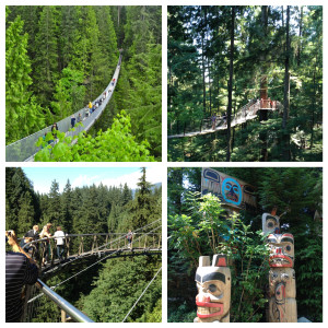 Adventures at Capilano Suspension Bridge Park