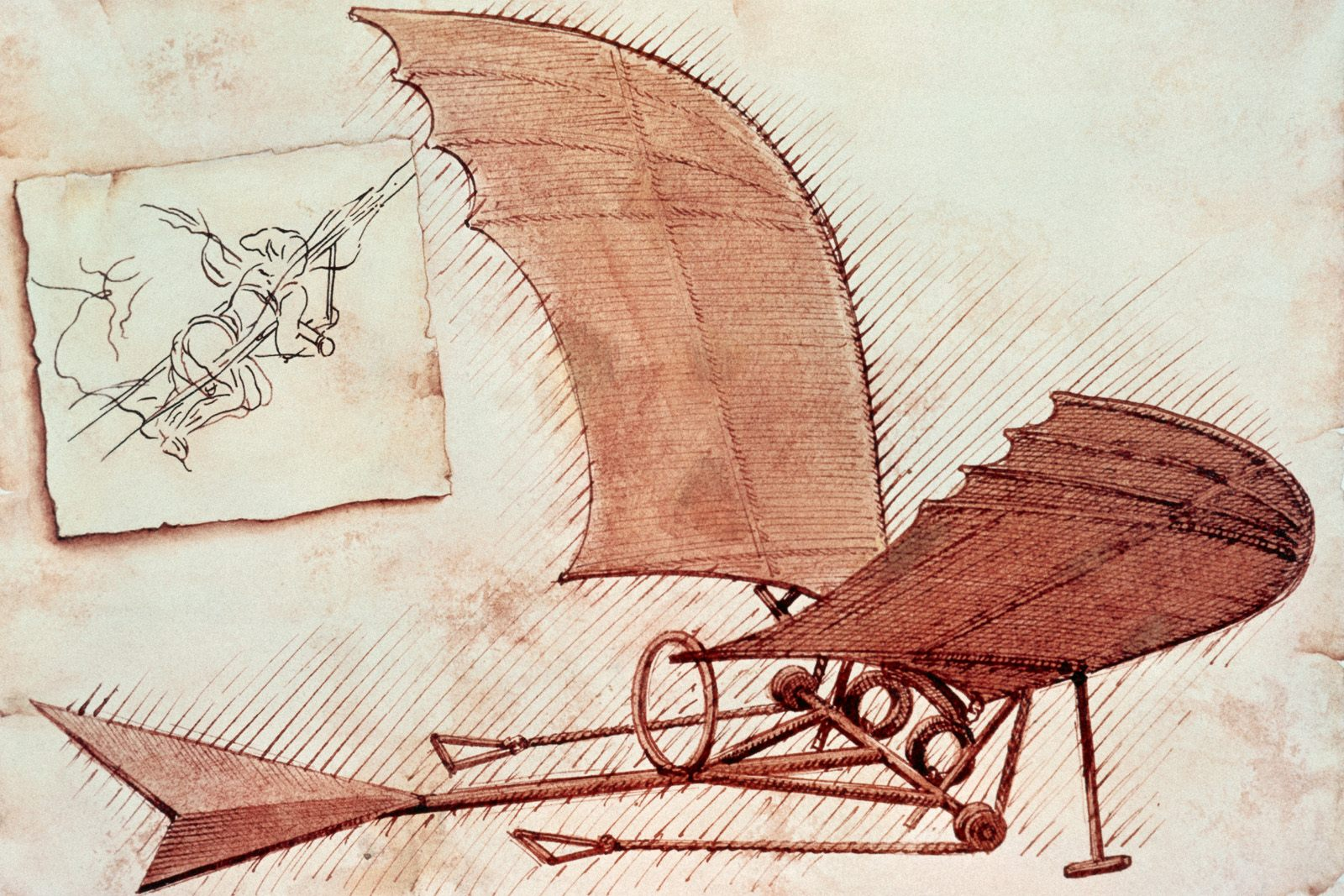 leonardo s flying machine