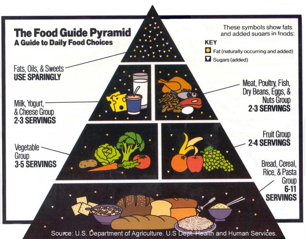 Worksheets Food Guide Pyramid Worksheets worksheets food pyramid guide waytoohuman free for kids 1992 calorie levels pyramid