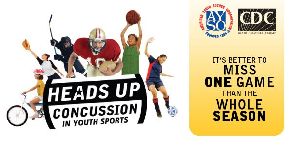 concussions outline The question i'm investigating and informing the audience of is whether or not the  nfl taken appropriate measures in concussion prevention.