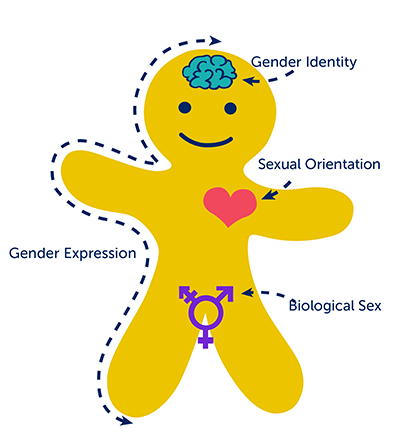 sex gender or identity The researchers said that finding out about patients' sexual orientation and gender identity is important in see how much you know about sex love.