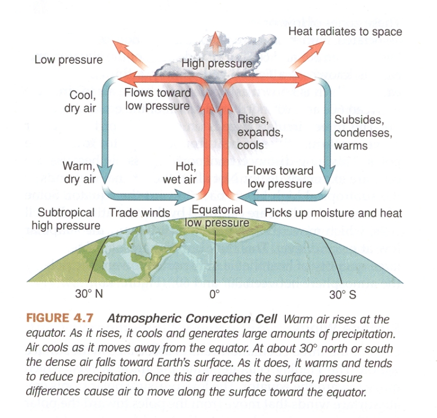 hadley cells the foundations of atmospheric circulation musings  : hadley cell diagram - findchart.co