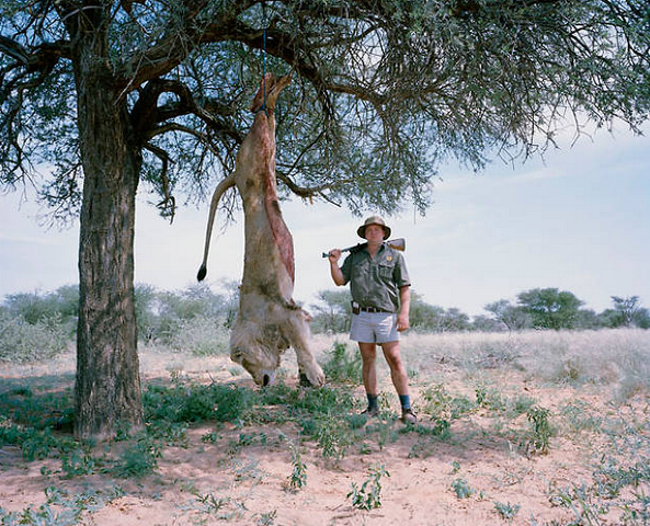 trophy hunting passion post as the injustices in third world countries or the way america treats the environment this photo essay depicted something that isn t actually a problem