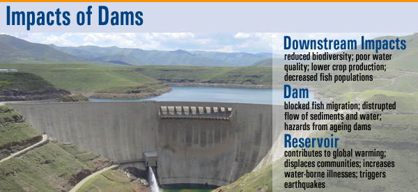 Dams Vs Natural Flow