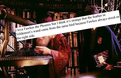 Ive been telling him to get a move on for days the pensieve my favorite fawkes moment though terribly depressing and wrongly cut out of the movies is his lament after dumbledores death it fits perfectly because voltagebd Images