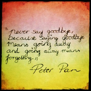 Never Say Goodbye | Quotes and Notes