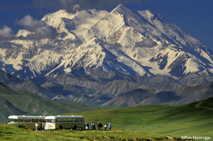 Denali-National-Park-Stoney-Dome