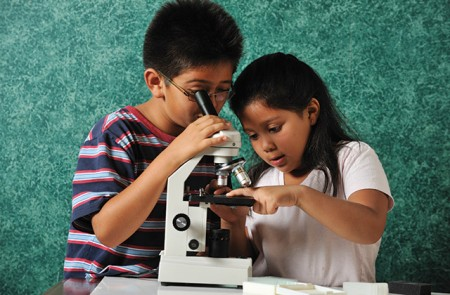 students looking through a microscope