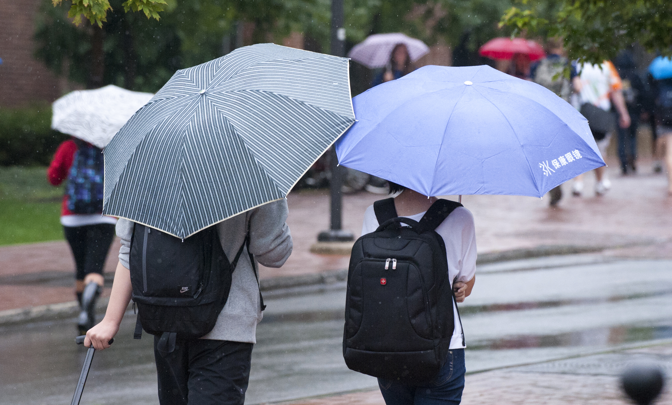 Two students with backpacks from the back with umbrellas walking together in the rain