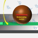 Molecular tribology and lubrication at nanoscale interfaces