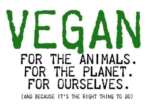 ethical vegans: a way to be(have) essay We have the ability to show others the correct way to act and behave by remaining ethical in the way we live, regardless of whether it involves our personal or business life what are ethics some final thoughts -- i have also learned over the years that ethics help us to remain on stable ground in an ever-changing world and that a person's .