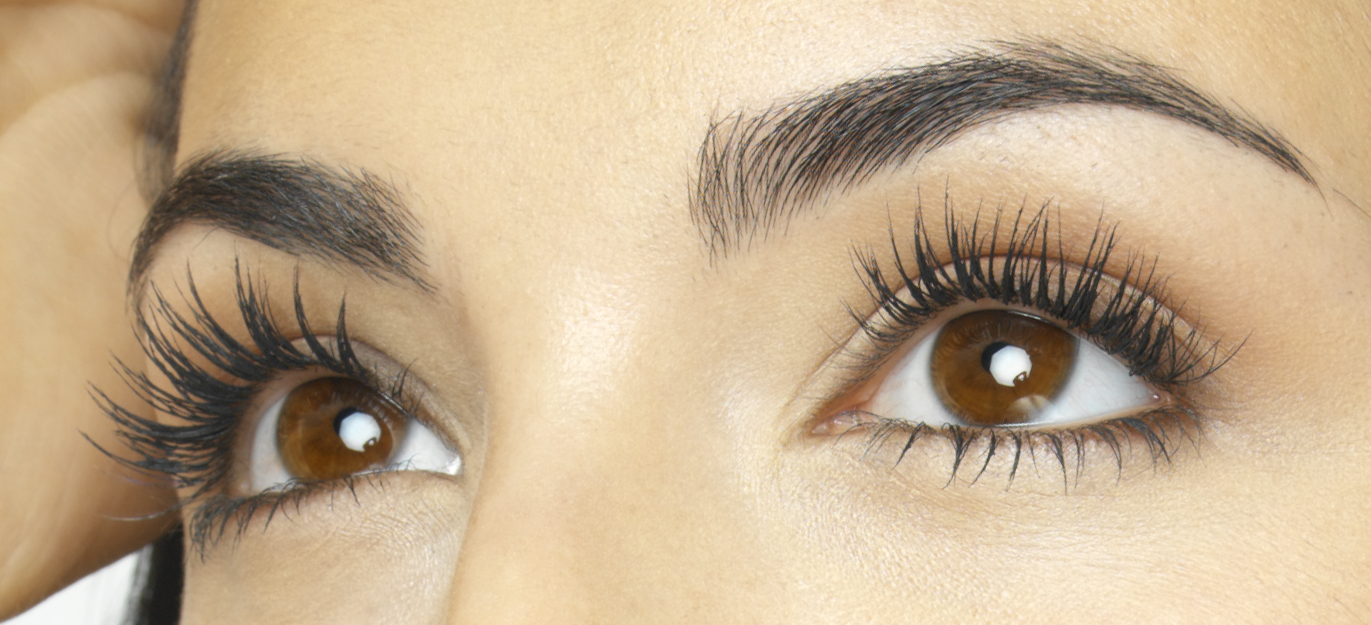 Why Do We Have Eyelashes And Eyebrows Siowfa14 Science In Our