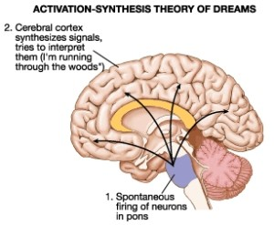 activation systhesis theory What was your last dream sometimes you can have a vivid dream that seems to be happening in reality some dreams can feel like they are premonitions.