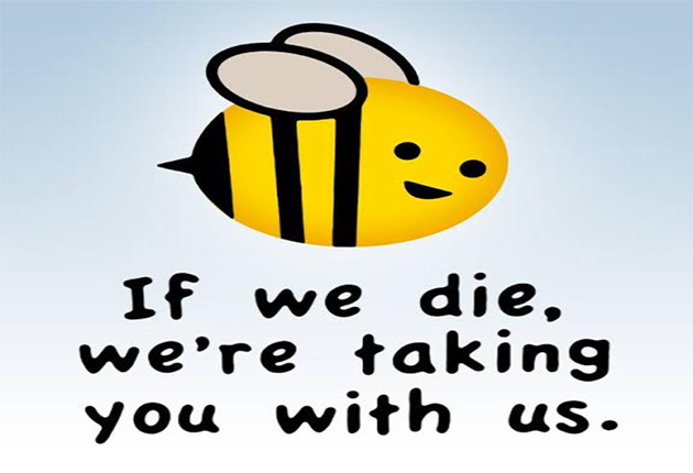 Image result for images of bees dying