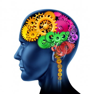 how much of the brain do humans actually use?   siowfa15: science, Cephalic Vein