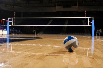Image result for volleyball and net