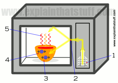 How Microwave Popcorn Works Siowfa15 Science In Our