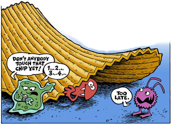 The Five Second Rule Myth Or Fact Siowfa15 Science In