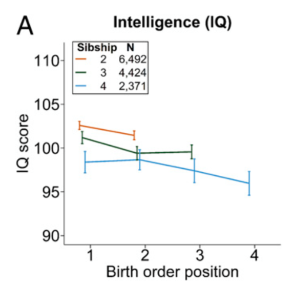 Birth Order Affects Child's Intelligence and Personality