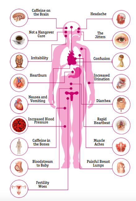 Screen Shot 2015 10 23 at 12.33.29 AM Effects Of Coffee On The Body How Caffeine Affects The Body Business Insider