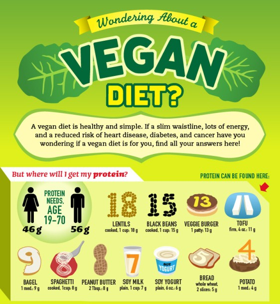 veganism an ethical and dietary controversy Strict vegetarianism, or vegan diet, is the practice of subsisting wholly on a diet composed of vegetables, grains, fruits, nuts, and seeds a strict vegetarian therefore abstains from all meat, including game, poultry, fish, crustaceans and shellfish.