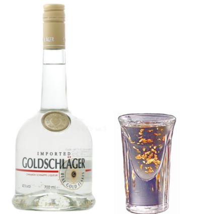 Image result for shots of goldschlager