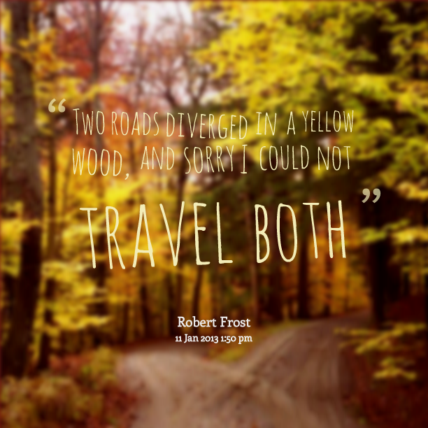 the path i choose to travel � stephanie medwid