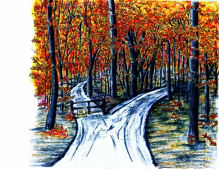 the decision on which path to take in the road not taken by robert frost The poem depicts the agony of a decision making and the rewards of forging your own path road not taken by robert frost robert frost's the road not taken.