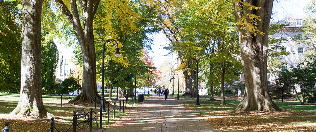 A view of a sidewalk on the tree-covered Mall on Penn State University Park campus in fall.