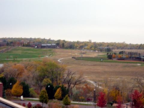 denver-fall-before.jpg