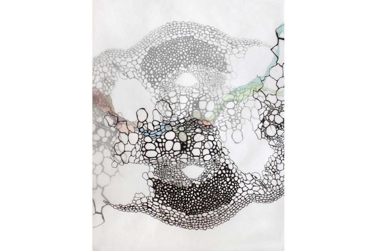 Drawing+Painting | Ink on layered mylar