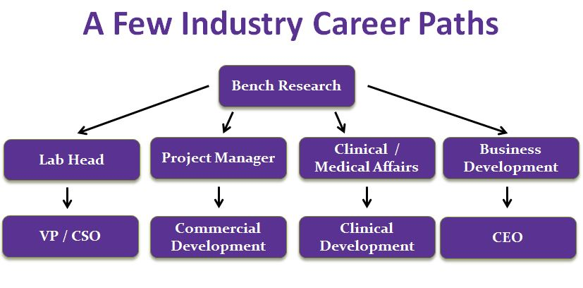 Here are some sample careers life scientists can apply for in the industry field.