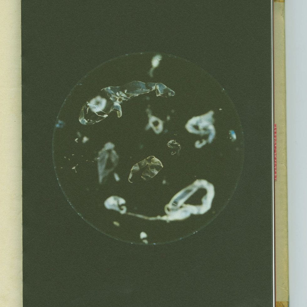 Image of microplastics from Beyond Drifting: Imperfectly Known Animals