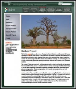 Screenshot of one of the proposed project pages, which will be added to the ELDM website.
