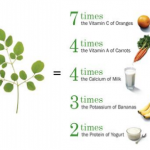 The benefits of the moringa leaf.
