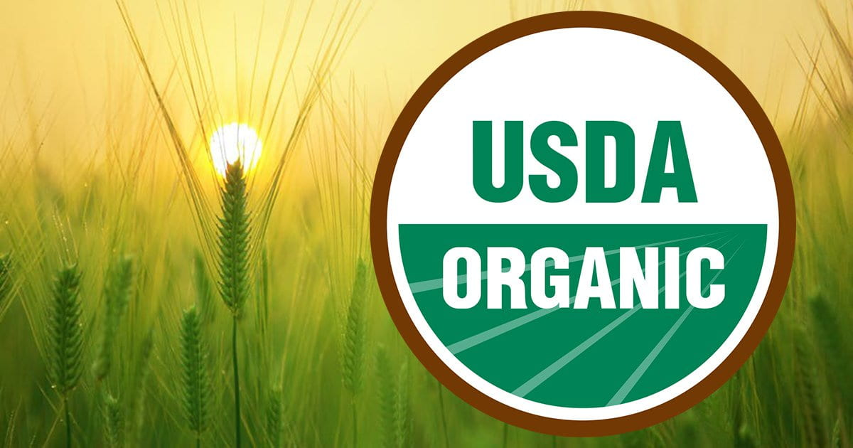 Enhance Your Business by Becoming a Certified Organic