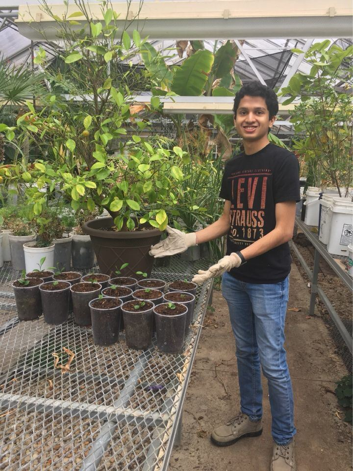 spring – Environmental Awareness & Community Action Project