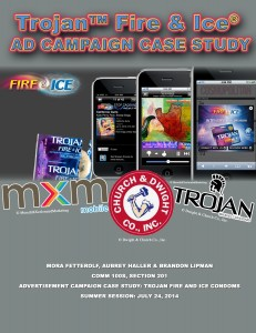 Fire and Ice Case Study