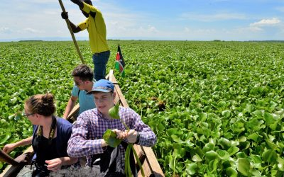 Biosynth Learns About Invasive Plant Species