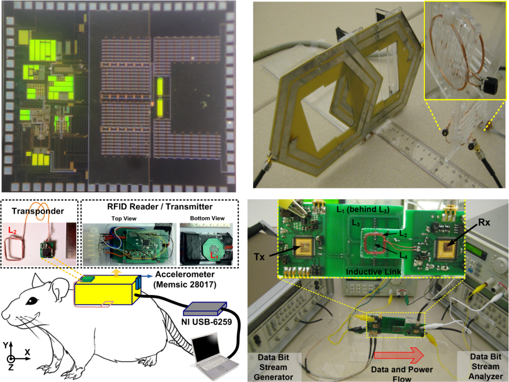 Power Management Integrated Circuits, Wireless Power Transfer, System Design and Experiment on Animals, and Near-Field Data Communication