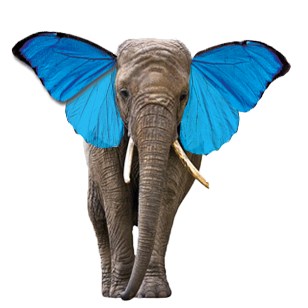 Juxtaposition In Adobe Photoshop Art003 Blog Elephant png picture, free download png image. juxtaposition in adobe photoshop