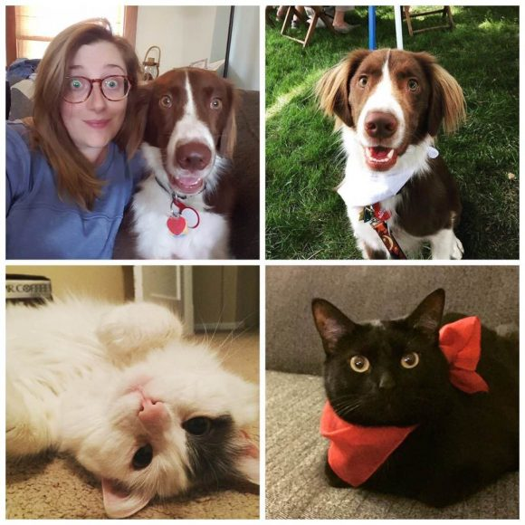 Photo of Amanda Peters and her dog, Teddy, a border collie/brittany mix and her two cats.