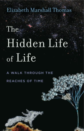 "book cover of ""The Hidden Life of Life: A Walk Through the Reaches of Time"""