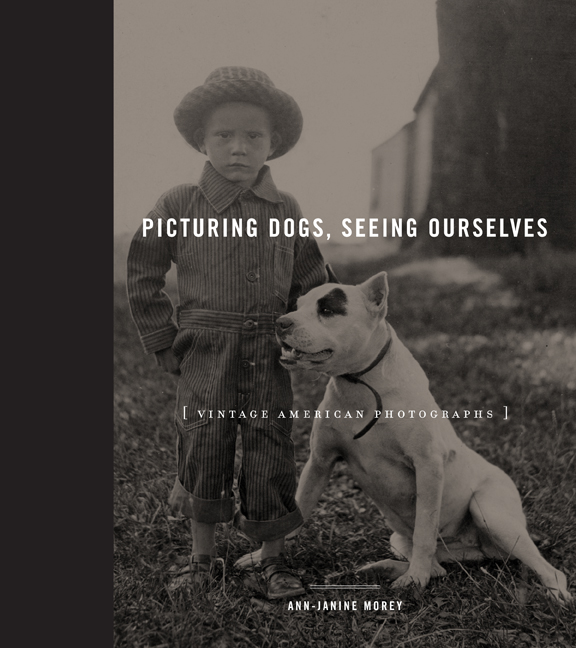picturing dogs